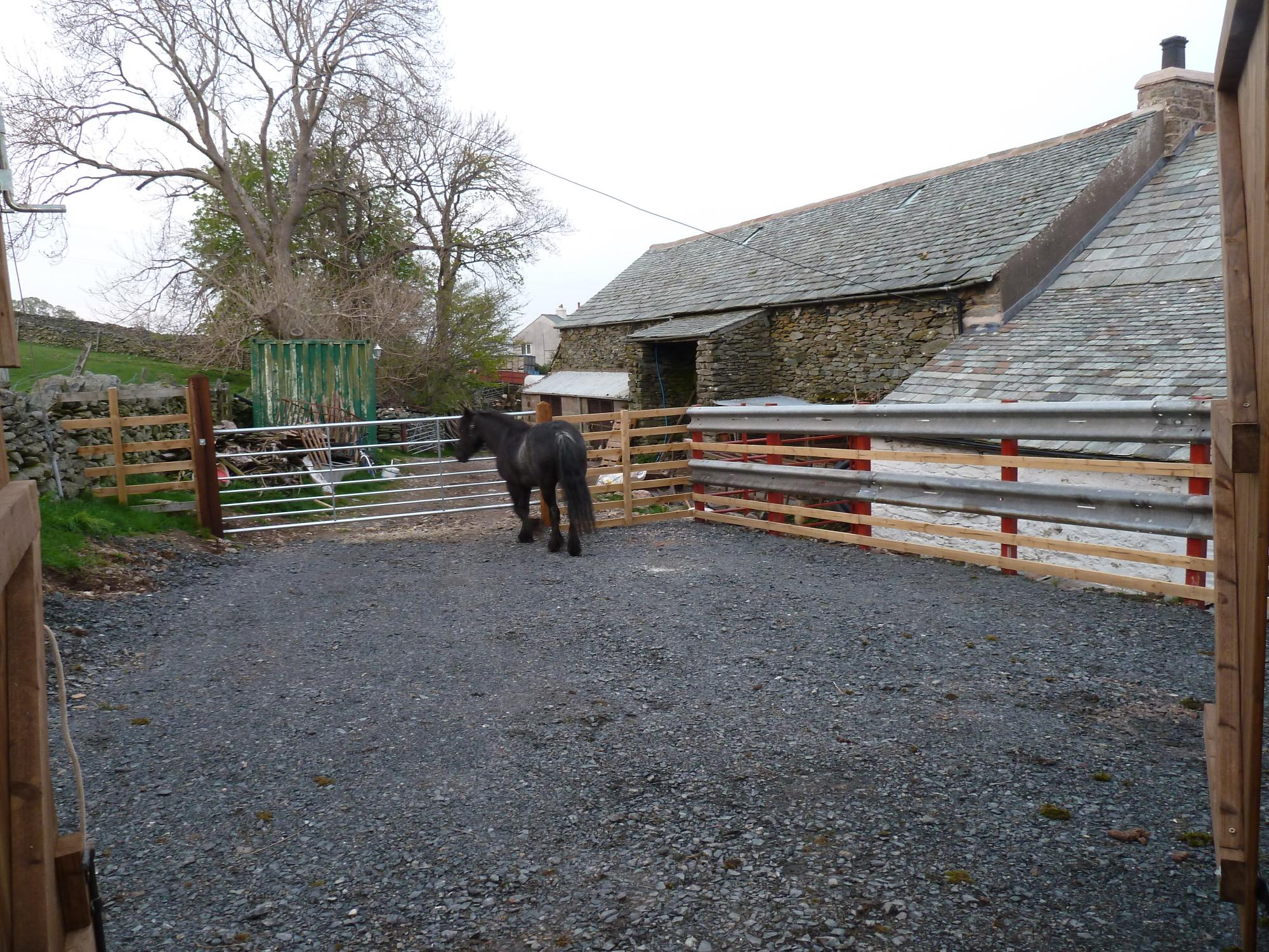 Stable Paddock